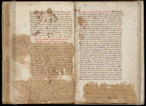 petrarch letters