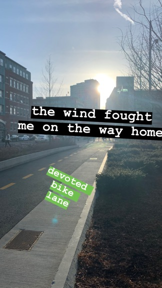 the wind fought